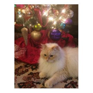 Cartão Postal Feliz Natal & feliz ano novo