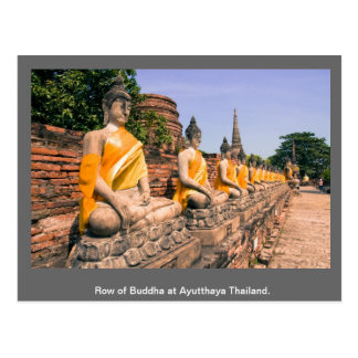 Cartão Postal Fileira de Buddha em Ayutthaya Tailândia