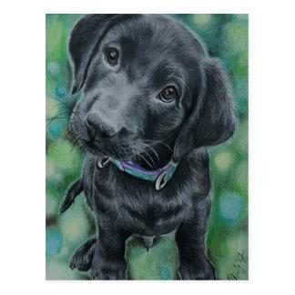 Cartão Postal Filhote de cachorro bonito