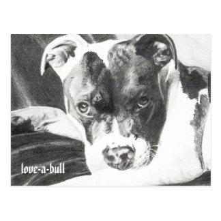 Cartão Postal Filhote de cachorro de Pitbull no lápis 4 por
