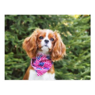Cartão Postal Filhote de cachorro descuidado orgulhoso do