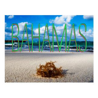 Cartão Postal Fim-Acima da praia de Bahamas