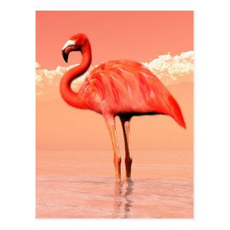 Cartão Postal Flamingo cor-de-rosa