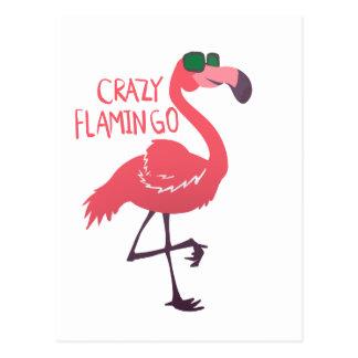 Cartão Postal Flamingo louco
