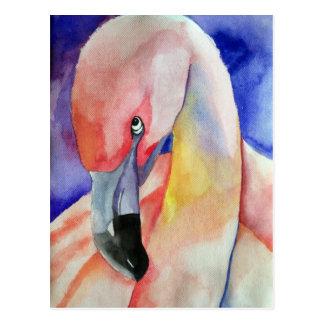 Cartão Postal Flamingo tímido (arte de Kimberly Turnbull)