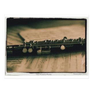 Cartão Postal flauta de flautim 1839