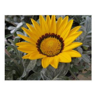 Cartão Postal Flor amarela