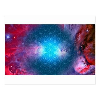 Cartão Postal Flor cósmica da vida