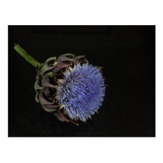 Cartão Postal Flor da alcachofra