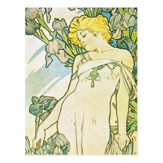 Cartão Postal Flor da íris
