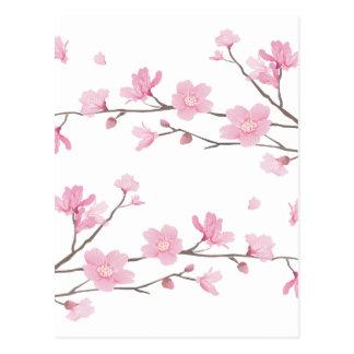 Cartão Postal Flor de cerejeira - Transparente-Fundo