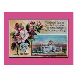 Cartão Postal Flor de estado de Arkansas do vintage, poema