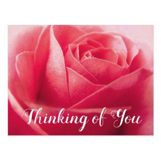 Cartão Postal Flor floral do rosa do rosa, pensando de você,
