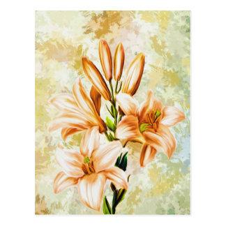 Cartão Postal Floral, arte, design, bonito, novo, forma, Crea