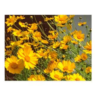 Cartão Postal Flores amarelas felizes brilhantes em um grupo