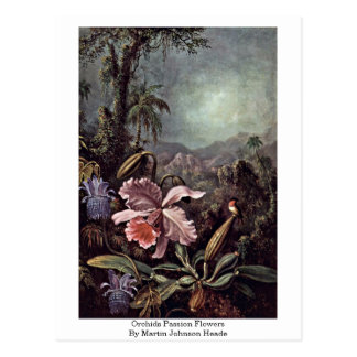 Cartão Postal Flores da paixão das orquídeas por Martin Johnson