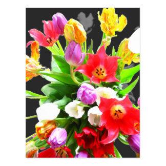 Cartão Postal Flores da tulipa do primavera