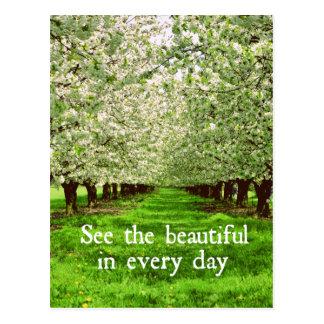 Cartão Postal Flores das árvores de Apple com citações