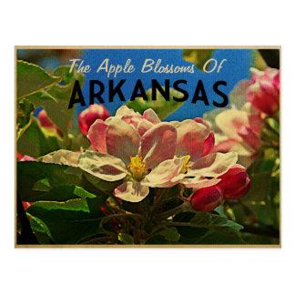 Cartão Postal Flores de Arkansas Apple