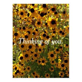 Cartão Postal Flores de Susan de olhos pretos que pensam de você