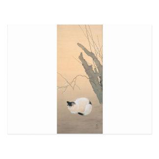 Cartão Postal Flores do gato e da ameixa por Hishida Shunso