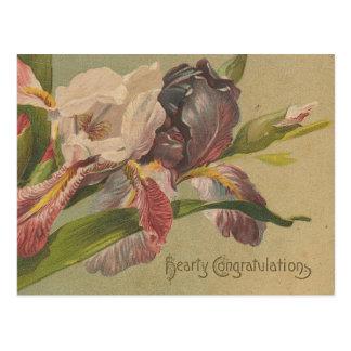 Cartão Postal Flores entusiastas dos parabéns