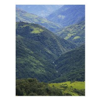 Cartão Postal Floresta das terras e do Himalaya no vale de