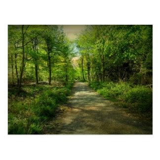 Cartão Postal Floresta de Bristol Avon na mola