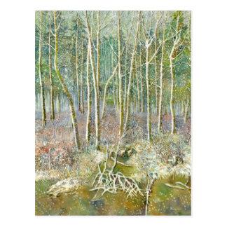 Cartão Postal floresta do inverno