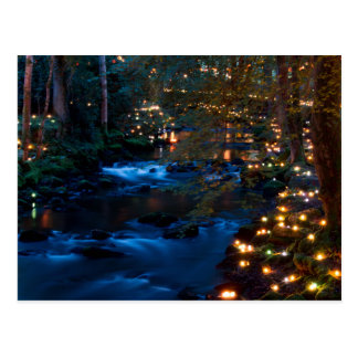 Cartão Postal Floresta mágica na noite