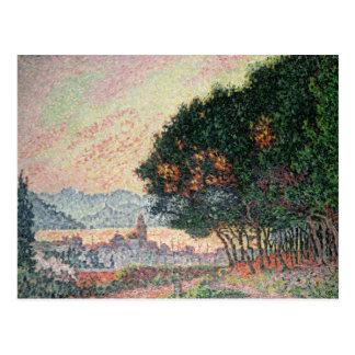 Cartão Postal Floresta perto de St Tropez, 1902