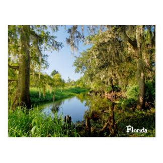 Cartão Postal Florida