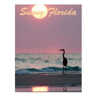 Cartão Postal Florida ensolarado
