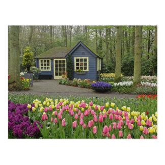 Cartão Postal Florista pequeno da casa de campo, jardins de