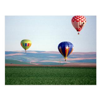 Cartão Postal Flutuador colorido dos balões de ar quente sobre o