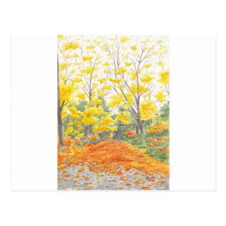 Cartão Postal Folhagem de outono em Adlershof
