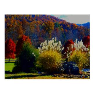 Cartão Postal Folhagem de outono nas montanhas