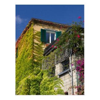 Cartão Postal Folhas coloridas na casa