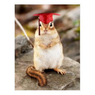 Cartão Postal Formando pequeno doce do Chipmunk