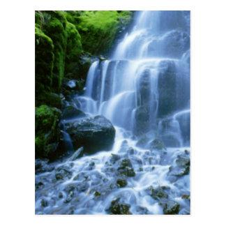 Cartão Postal Foto da multa da cachoeira do Rio Columbia