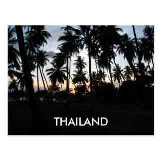 Cartão Postal Foto das palmeiras do por do sol de Tailândia
