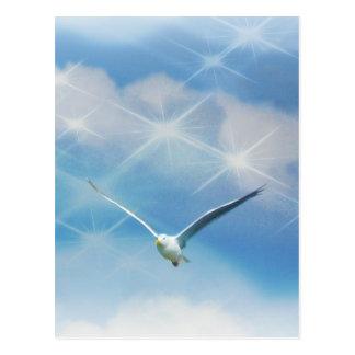 Cartão Postal Foto do pássaro da gaivota em vôo