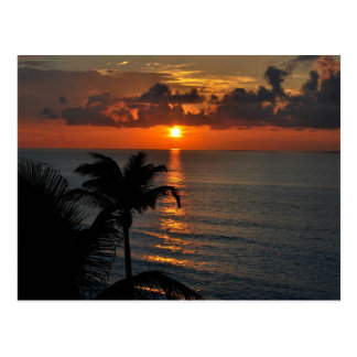Cartão Postal Fotografia tropical da paisagem do por do sol