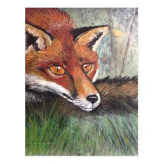 Cartão Postal Fox Sneaky