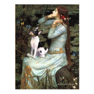 Cartão Postal Fox Terrier - Ophelia do brinquedo assentados