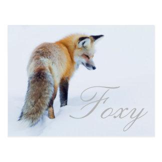 Cartão Postal Fox vermelho no inverno