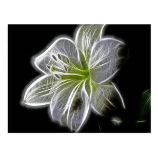 Cartão Postal Fractal branco da orquídea no preto