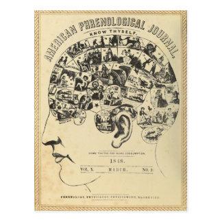 Cartão Postal Frenologia: Conheça Thyself (o cartão)