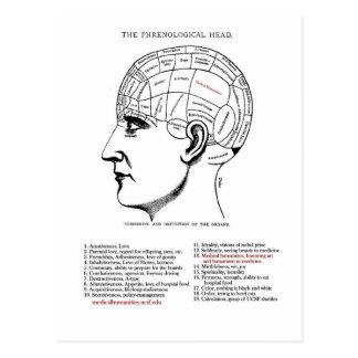 Cartão Postal Frenologia médica das humanidades
