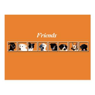 Cartão Postal Friends